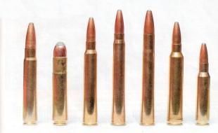 Патроны Blaser для магазинных карабинов и штуцеров (слева направо): 9,3x62, .45 Blaser, .30R Blaser, 8x75RS, 9,3x74R, .300 Win. Mag. и .308 Win.