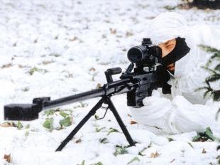 Снайперская винтовка В-94