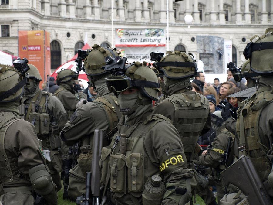 Военные силы Австрийской Республики